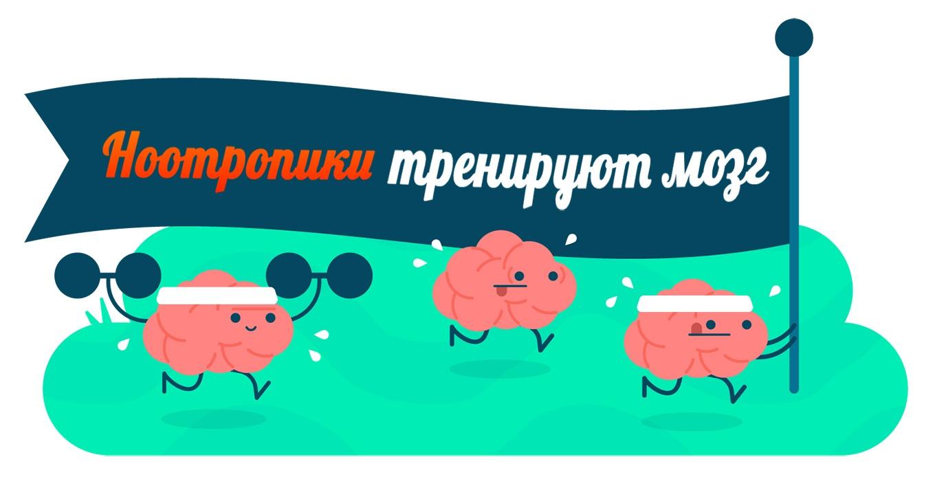 Ноотропики тренируют мозг